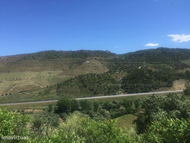 Quintinha agrícola situada nas Braceiras - Vila Nova De F...