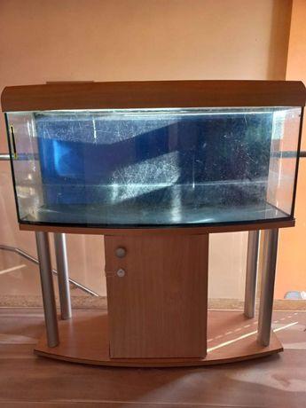 Akwarium 240l z kompletnym wyposorzeniem