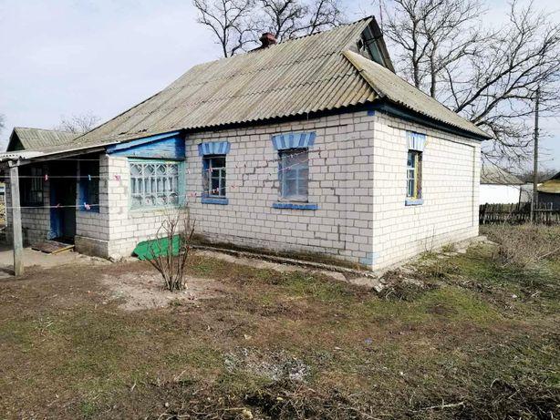 Продам дом с большим участком в с. Остролучье, Барышевский р-н