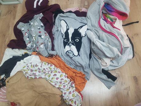 Oddam 19 sztuk ubrań za karmę i akcesoria dla zwierząt