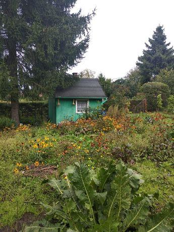Działka ogrodnicza