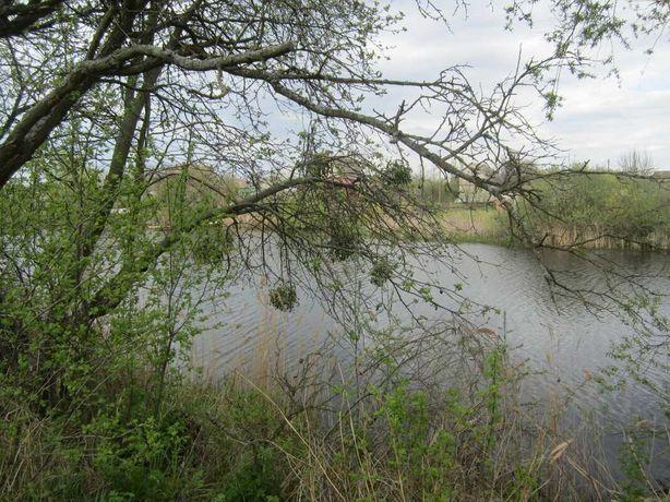 Дача у рыбацкого пруда на Басах