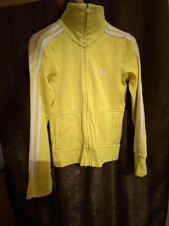 Woman jacket Adidas s/36 женская спортивная кофта
