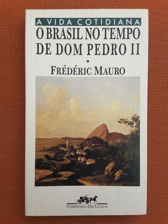 O Brasil no Tempo de Dom Pedro II / Terra Brasilis