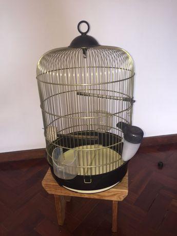Gaiola de pássaros // Birdcage