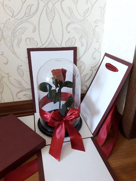 Роза в колбе к новогодним праздникам! От Производителя.