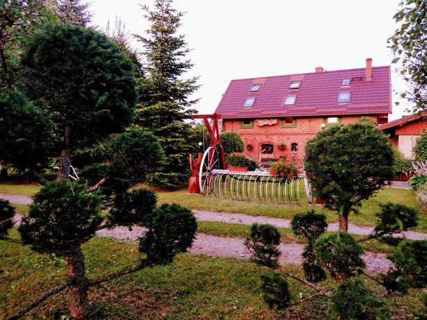 Wypoczynek na wsi - Zielone Wzgórze Kleszczyniec