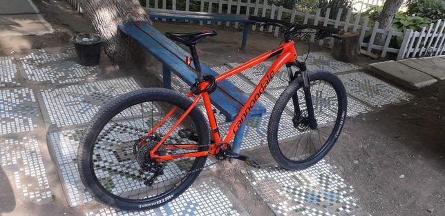 Велосипед Cannondale trail 5 L 29 (2019)