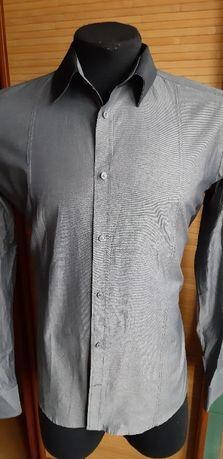 мужская рубашка BERTONI style12160 (Macedonia)