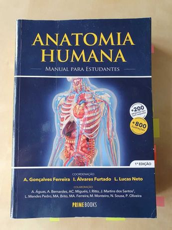Manuel Anatomia Humana para estudantes 1a edição