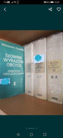 Słownik 3 tomy słownik wyrazów obcych