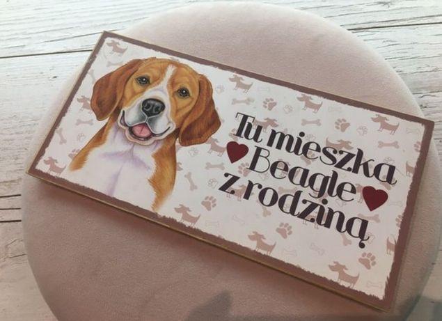 Tabliczka drewniana beagle pies