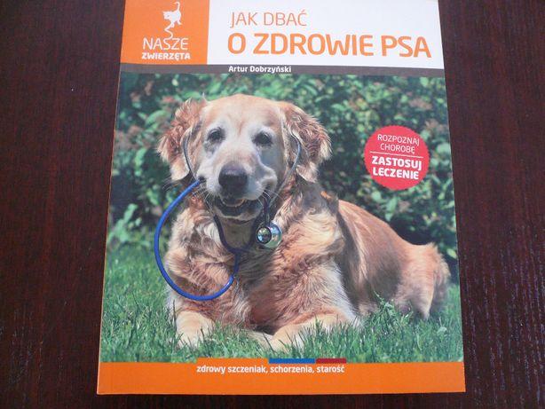 Jak dbać o zdrowie psa Artur Dobrzyński