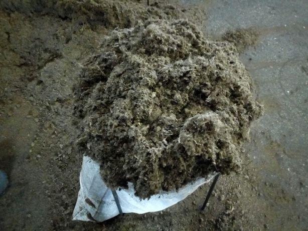 Торф для голубики, кислый. В мешках по 60 литров. рН 2,5 - 3,5