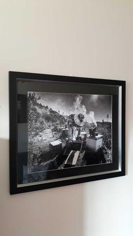 OFERTA NATAL - Quadros com fotografias de fotógrafo amador