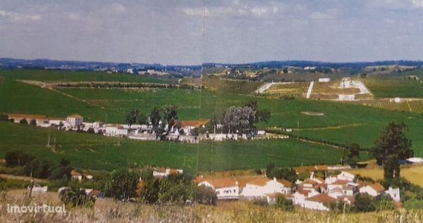 Terreno para moradia com 49.200 m2 perto Alenquer