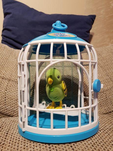 Little Live Pets ptak zabawka interaktywny