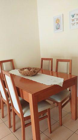 Mesa de jantar + 6 cadeiras