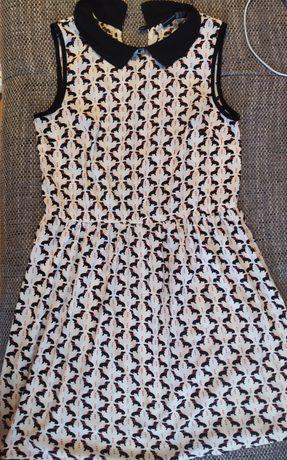 Letnia sukienka w jamniki rozm. 36