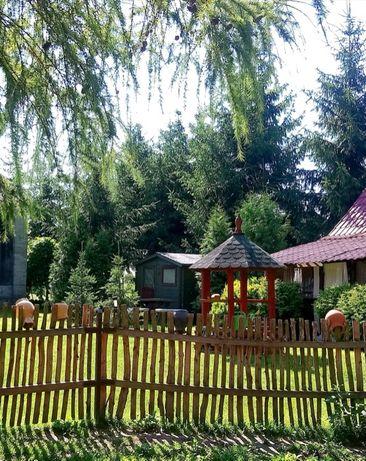 Domek do wynajęcia przy POLESKIM PARKU NARODOWYM - Konie