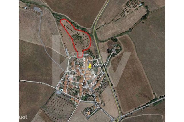 Terreno rústico com 11.700m² com possibilidade de construção de habita