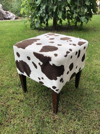 Taborecik krowa