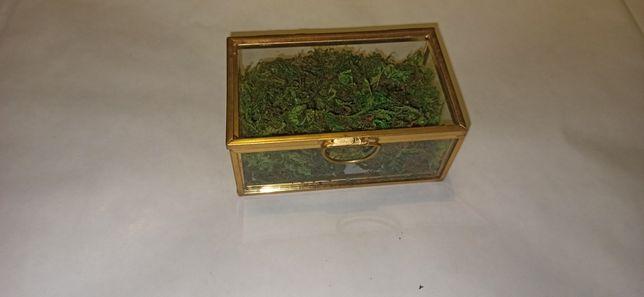 Pudełko na obrączki złote szklana szkatułka z mchem