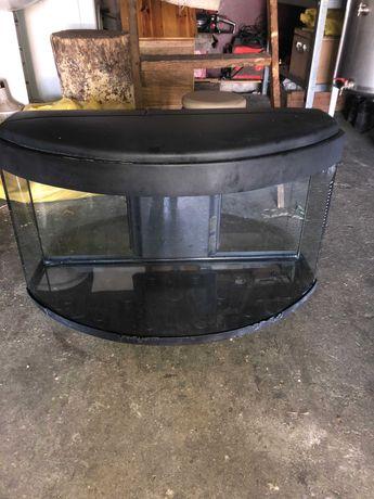 aquário para peixes