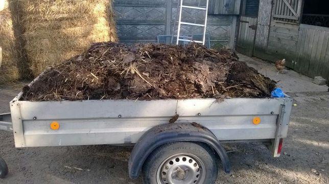 Obornik Koński z dowozem poznań i okolice ok. 500 kg