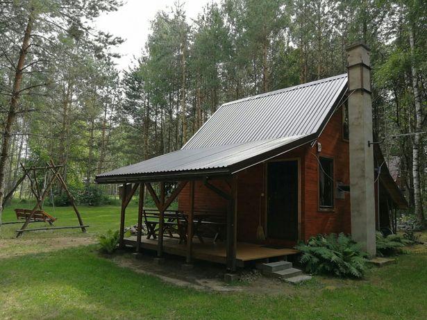 Leśny domek letniskowy Piasutno Mazury