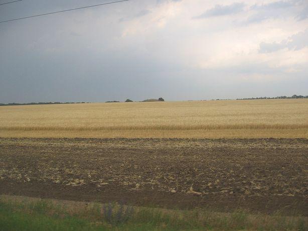 Продам земельный пай 1.05 гектара