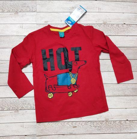 Лонгслив, реглан, кофта, свитер, свитшот, футболка, 104,110,116 размер