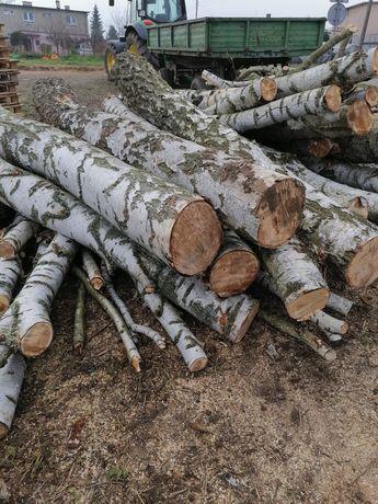 Sprzedam drewno opałowe różne od 75 zł do 150 zł za mp