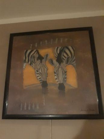 Obraz Anita de harde  zebra zebry