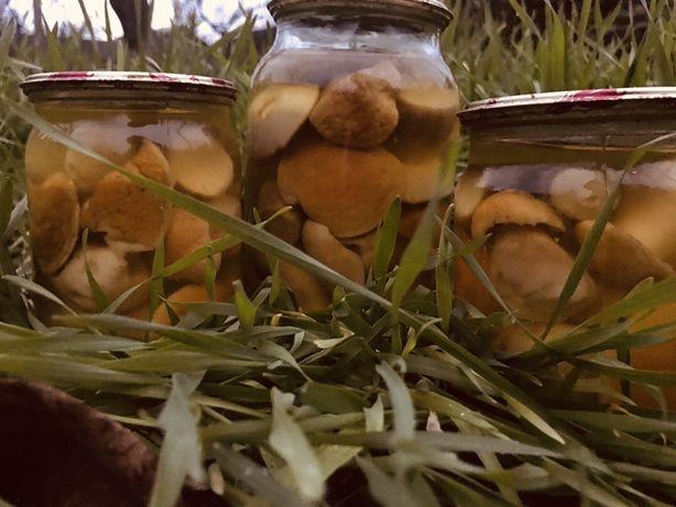 Белые грибы маринованые 2020