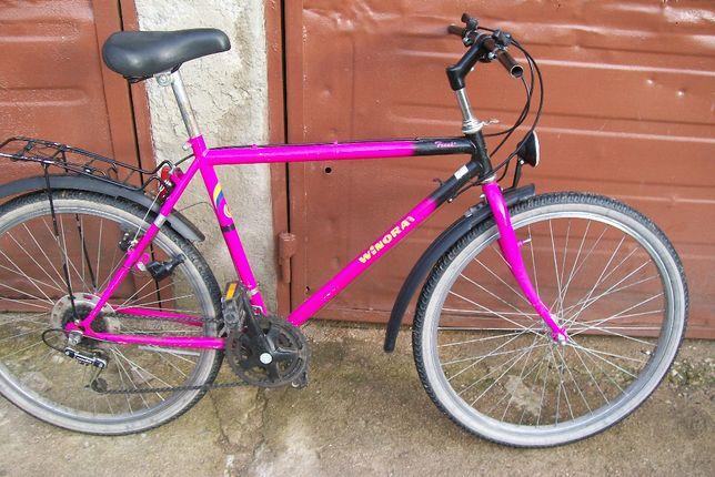rower meski WINORA-przywieziony z niemiec do poprawek