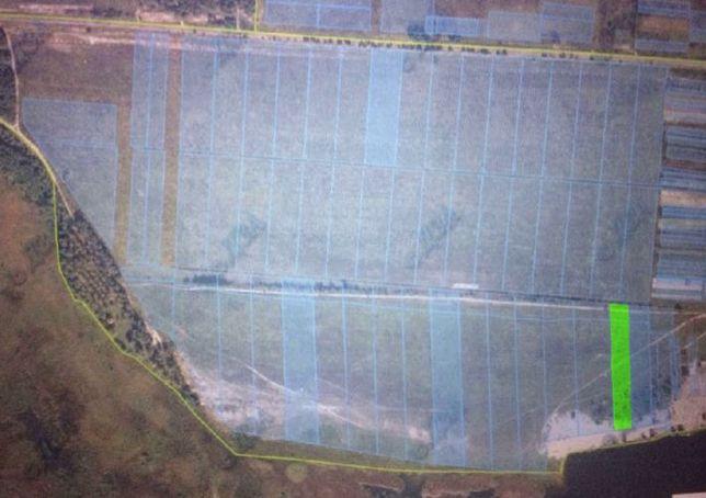 Земельный участок 1Га с выходом на воду