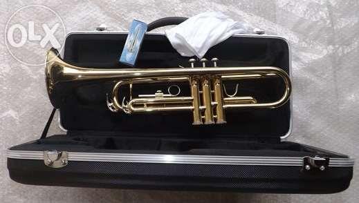 Trompete dourado novo
