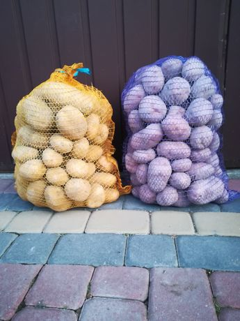 Ziemniaki  jadalne 0.80zł /kg Bellarosa, Tajfun, .