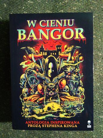 W cieniu Bangor - antologia grozy, Stephen King, horror, opowiadania