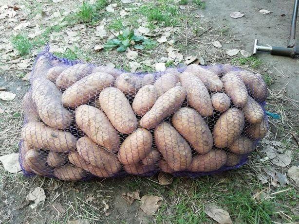 Продам картошку с доставкой на дом!!