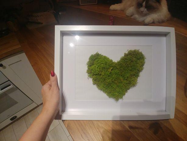 Obraz mech serce dekoracja wesele i do domu