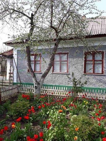 Будинок, літня кухня, город, господарські приміщення