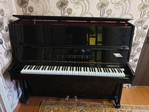 Продам пианино фортепиано