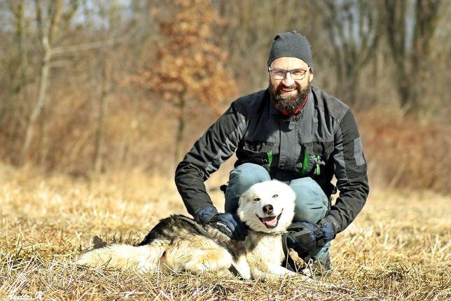 LOKI-husky-wesoły, energiczny szuka kompana na wypady