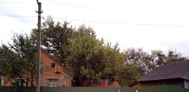 Житловий будинок (з господарськими будівлями, садом і землею)