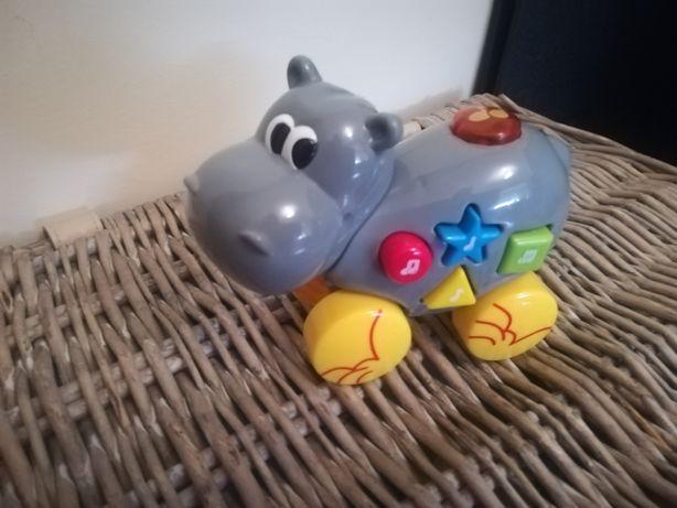 Carro musical hipopótamo
