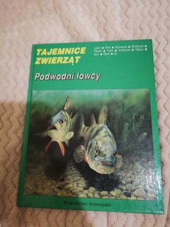 Podwodni łowcy - Tajemnice zwierząt - książka