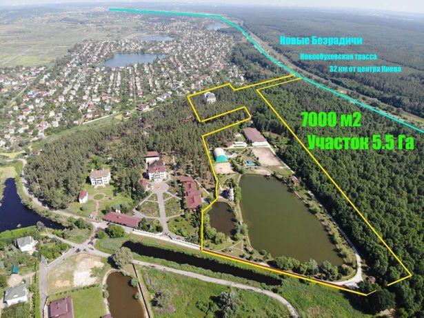 Земельна ділянка з озером - 5.5 Га - с. Нові Безрадичі - ліс