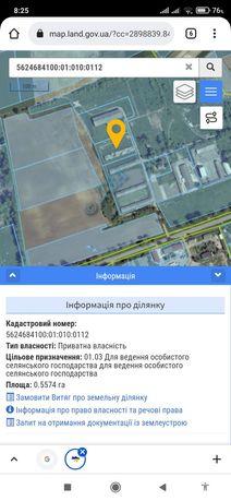 Продається земельна ділянка 0,56 Га під ОСГ с.Дядьковичі Рівн-ого р-ну